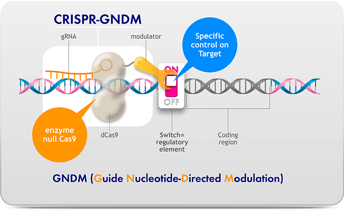 CRISPR-GNDM Platform Enables Specific Modulation of Gene